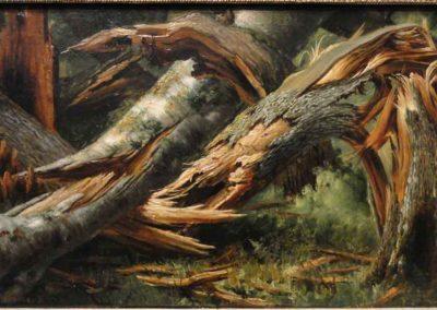 When the Oak Tree Falls: A Death Wish